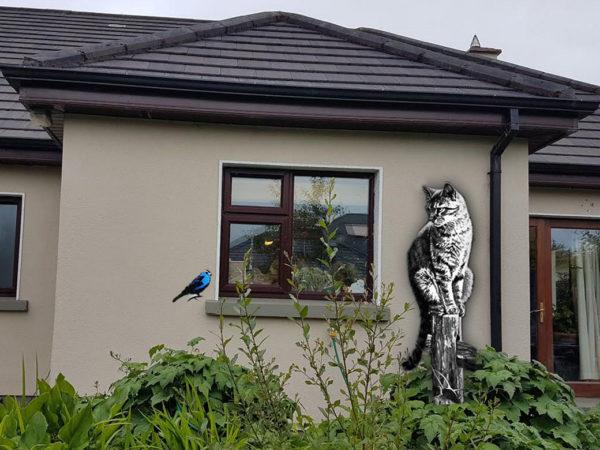 Wall art Cat & Bird