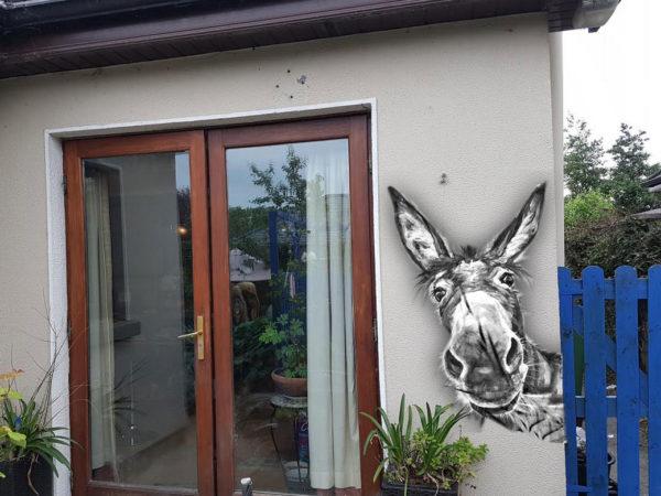 Wall art Donkey