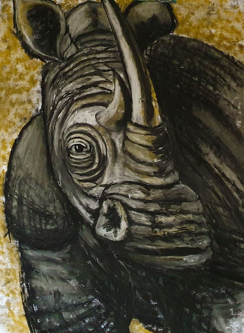Tonal Rhino - Online Courses with Ennis Art School